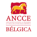ANCCE-BELGICA